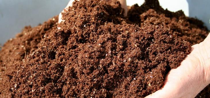 Jaarlijkse compostactie bij Irene Hasselt